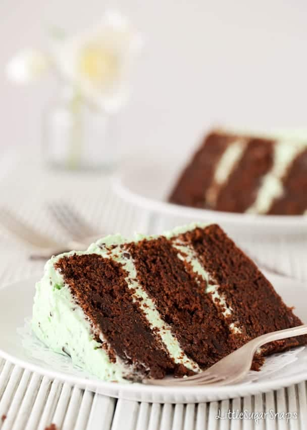 Close up of chocolate cake with mint choc chip buttercream