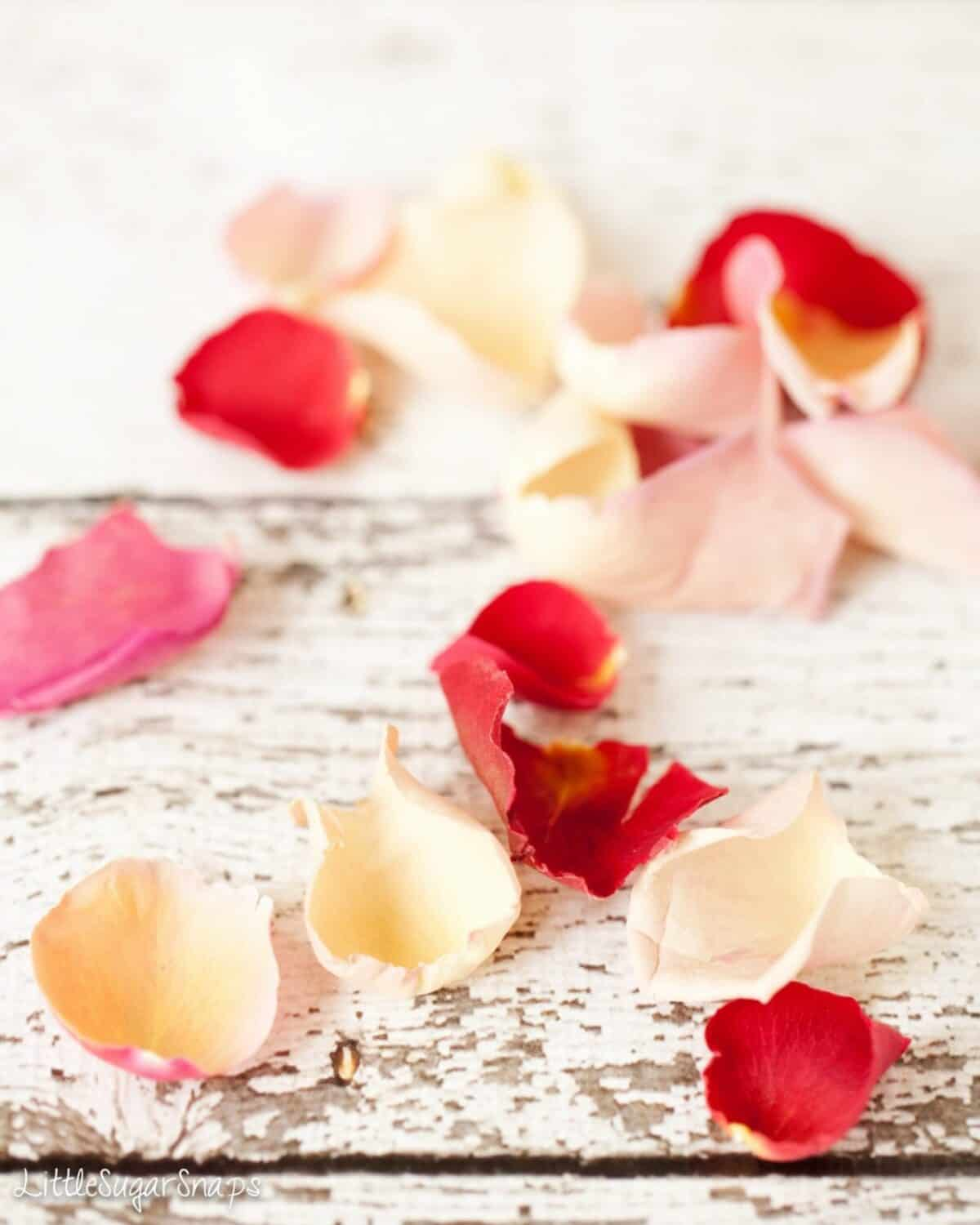 Edible rose petals on a shabby-chic tabletop