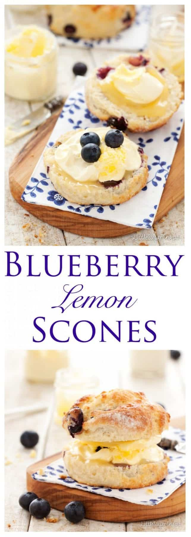 Blueberry Lemon Scones: upgrade the classic British Cream Tea with these Blueberry Lemon Scones. Fruity & zesty with a soft, tender crumb and a tangy sugared lemon crust. Pile high with lemon curd and clotted cream for a lusciously indulgent summertime treat