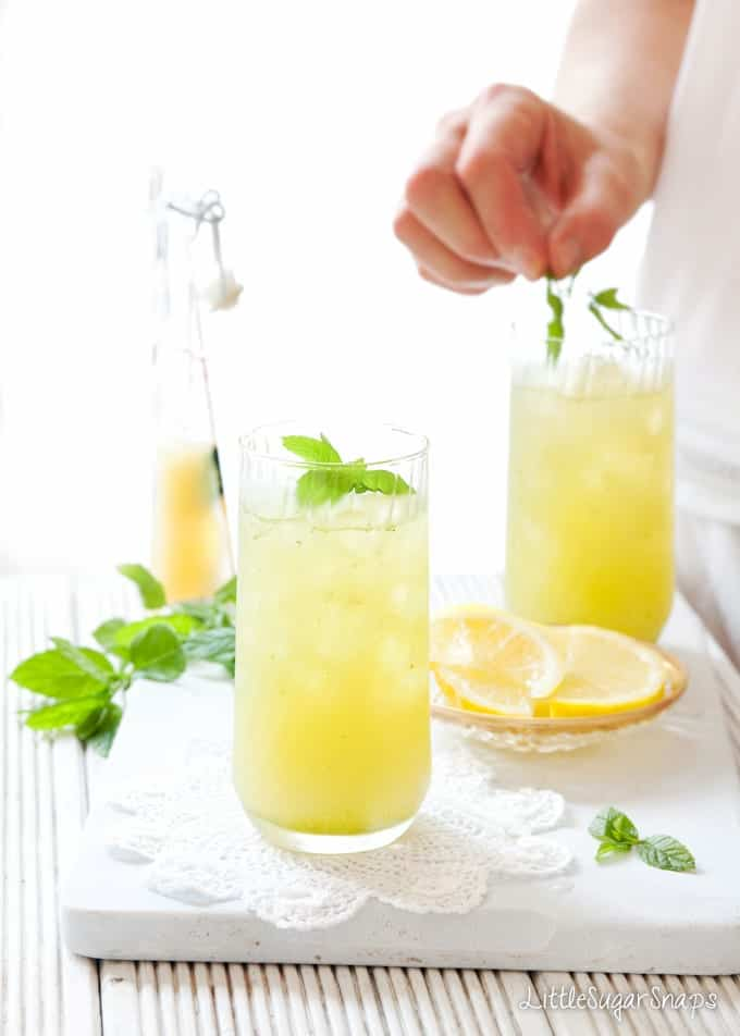 Apple Lemon Mint Fruit Cooler