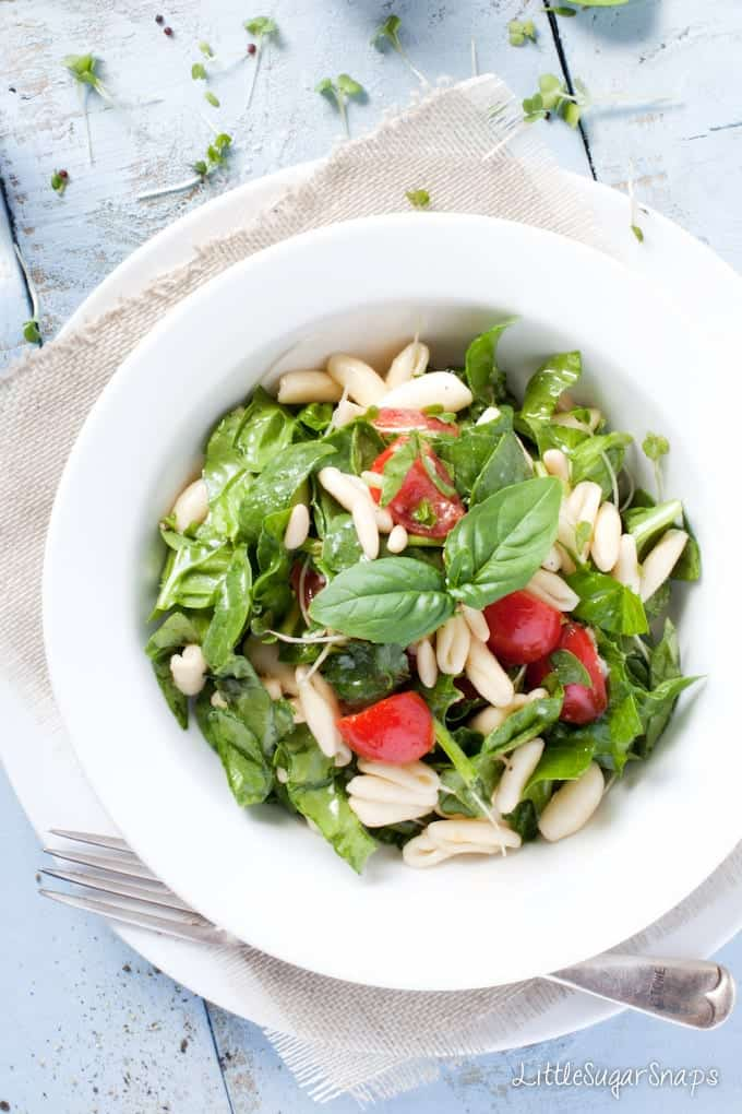 Close up of a bowl of Pasta Salad with spinach and basil