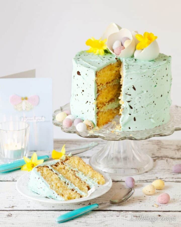 Speckled White Chocolate Mint Cake