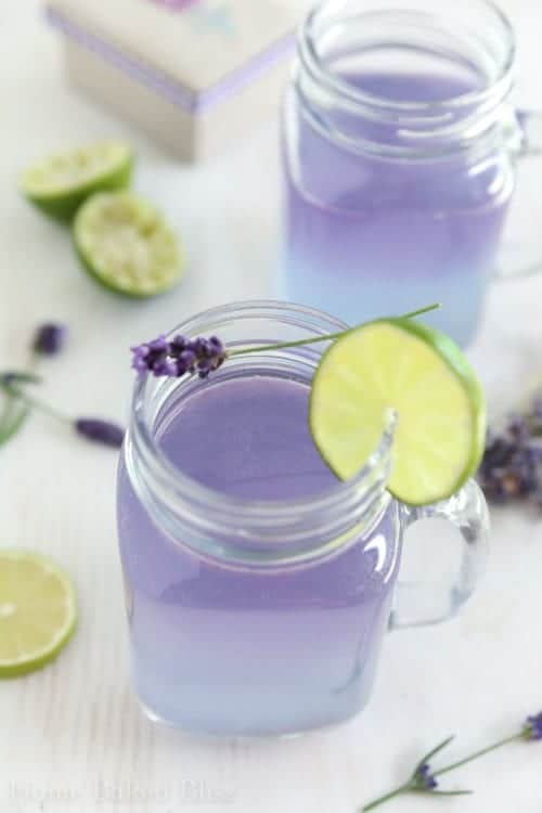 Glasses of lavender limeade.