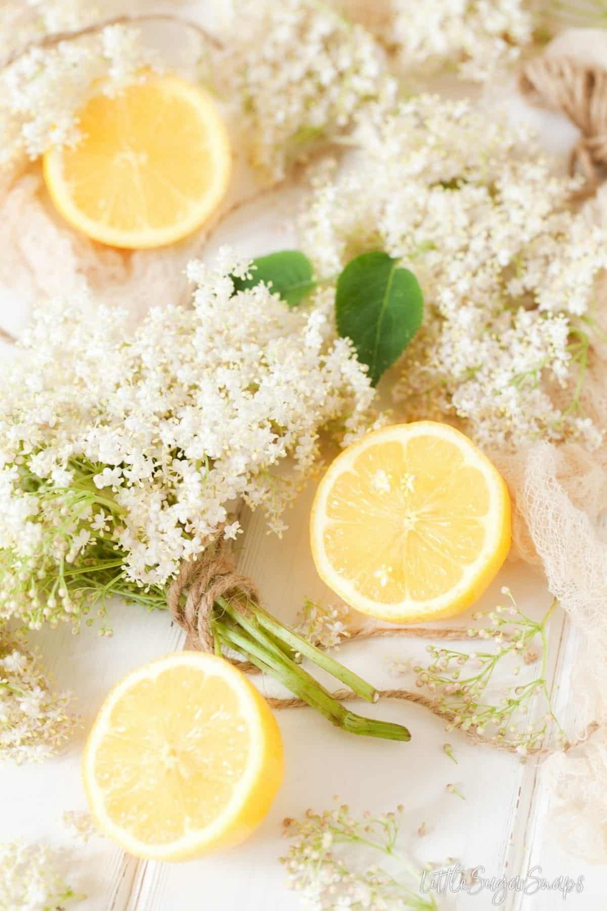 Lemon slices and elderflowers on a worktop