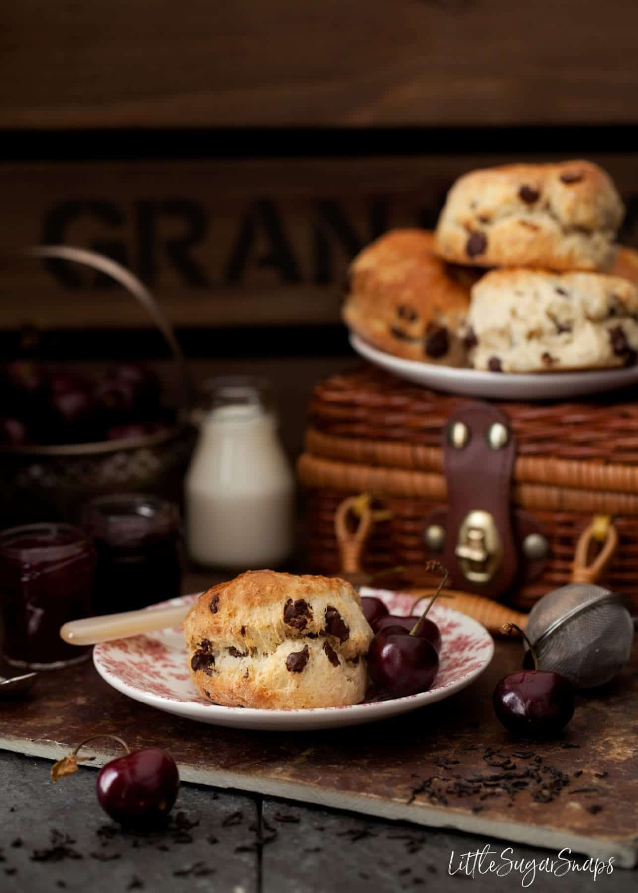 A chocolate chip scone on a plate with fresh cherries.