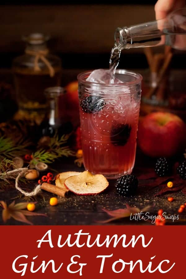 Autumn Gin & Tonic with Blackberry, Apple & Pear #gin #ginandtonic #gin&tonic #g&t #autumng&t #blackberrygin #blackberryapplegin #blackberrygintonic #applegintonic #fallgintonic #fallg&t