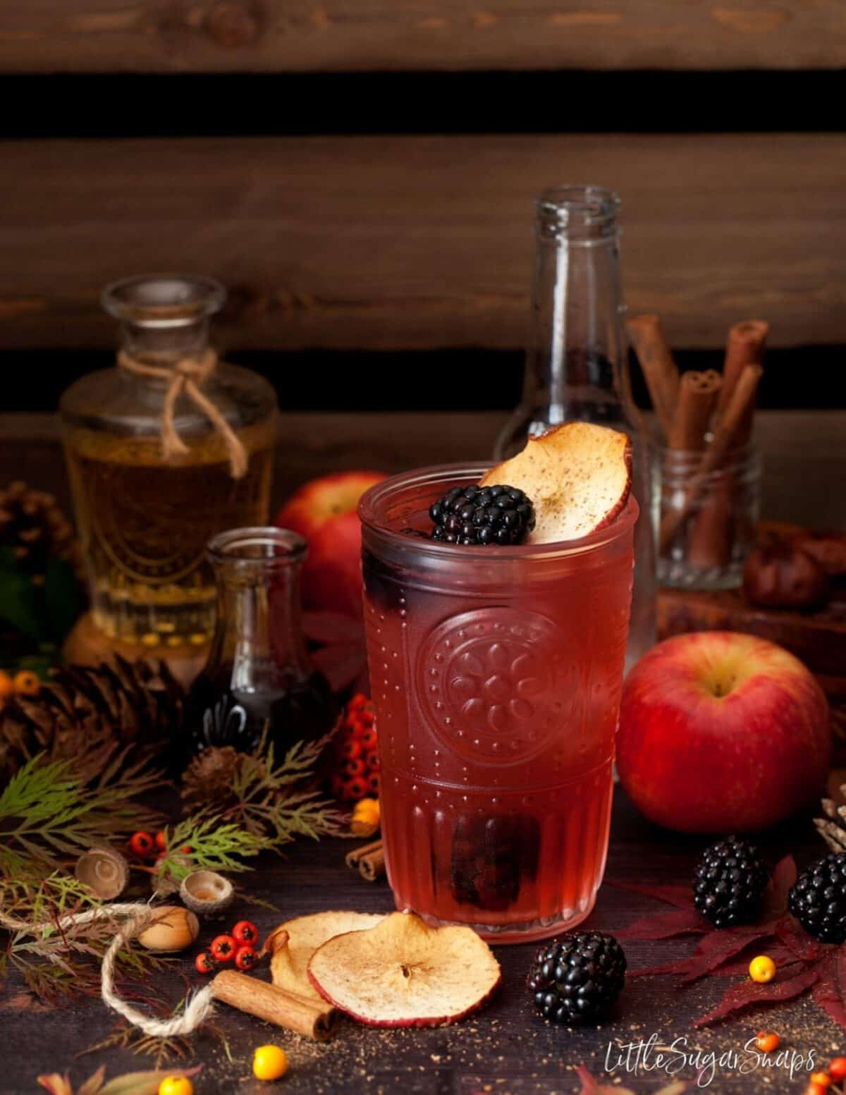 Autumn Blackberry and gin drink decorated with fresh berries and dried apple slices.