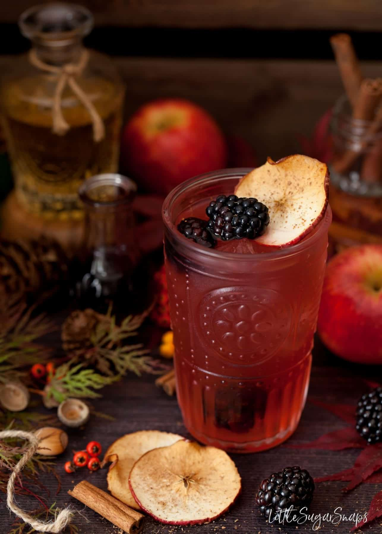 A glass of Blackberry and Apple Gin and tonic garnished with blackberries, apple and cinnamon.