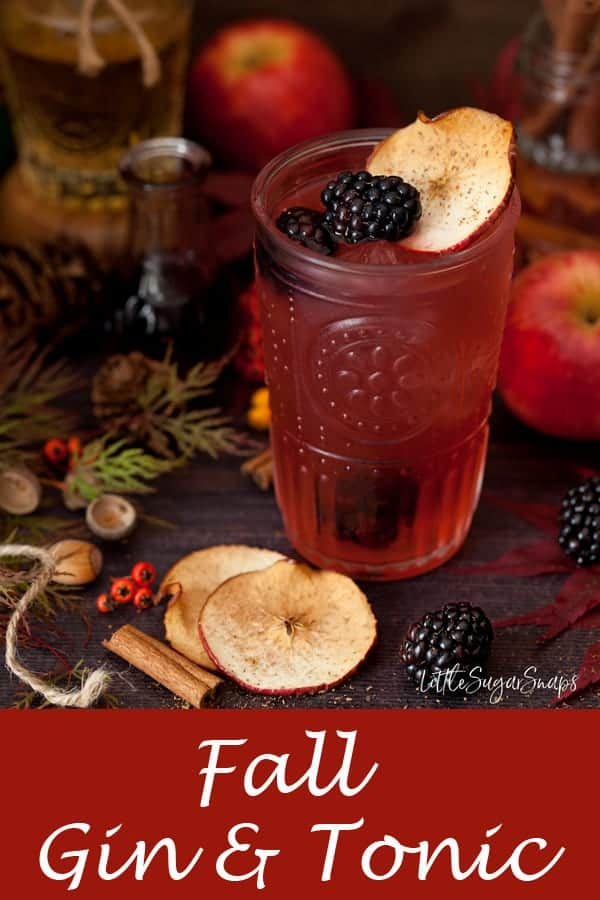 Fall Gin & Tonic with Blackberry, Apple & Pear #gin #ginandtonic #gin&tonic #g&t #autumng&t #blackberrygin #blackberryapplegin #blackberrygintonic #applegintonic #fallgintonic #fallg&t; Tonic