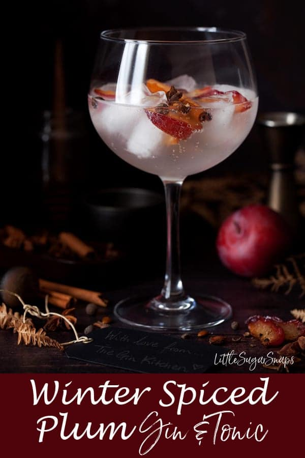 Winter Spiced Plum Gin Tonic #g&t #gintonic #ginanadtonic #gin&tonic #plumgin #plum gintonic #spicedgintonic