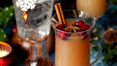 Christmas Mulled Gin & Tonic with Apple