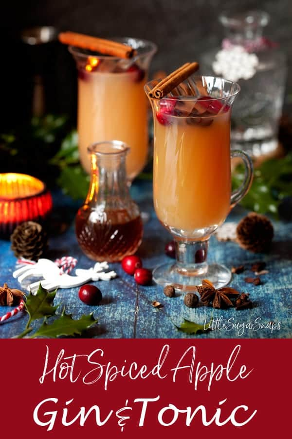 Hot Spiced Apple Gin and Tonic #gin #gintonic #mulledgin #hotgintoddy #hottoddy #spicedapplegin #mulledgintonic #ginanadtonic #mulledginandtonic #christmasgin #mulledapple width=