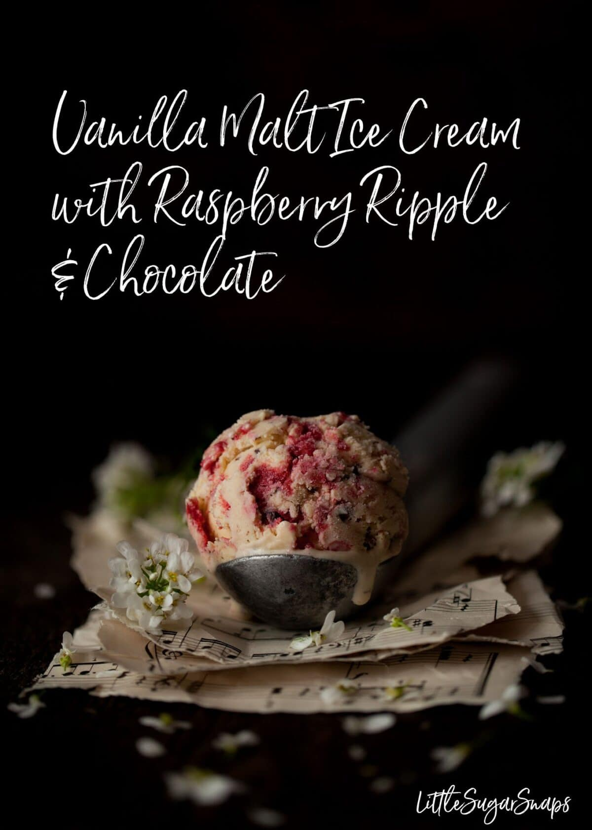 Malted Milk Ice Cream with raspberry ripple and chocolate #malticecream #vanillamalt #maltedmilkicecream #raspberryripple #maltraspberry #maltrecipe #chocchipicecream