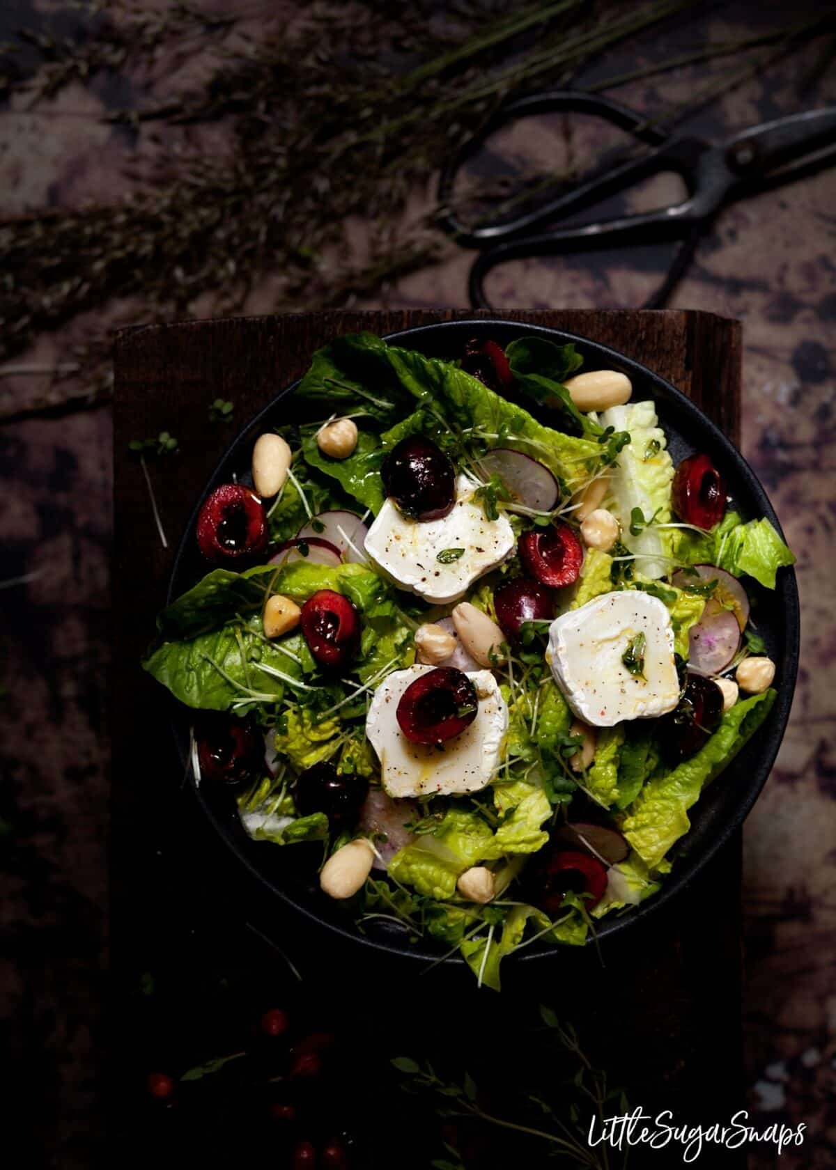 Overhead view of a plate of goats cheese, cherry and thyme salad.