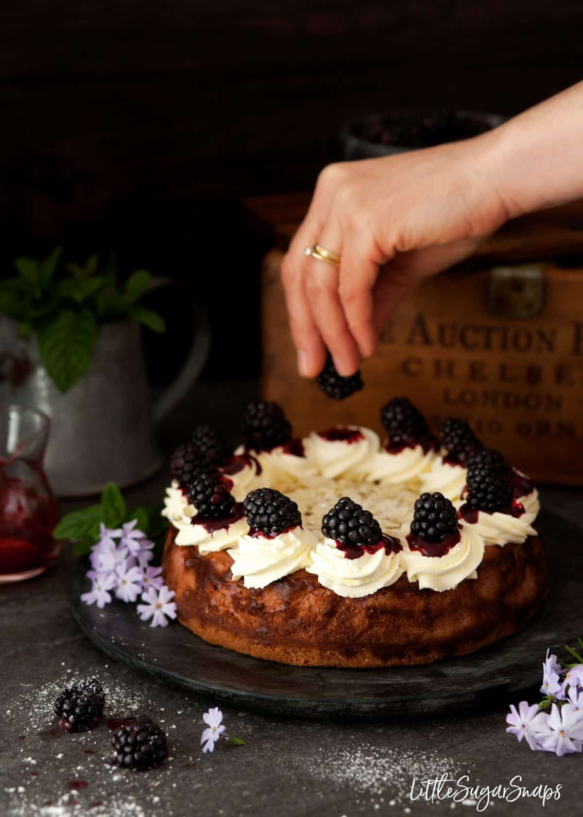Person adding blackberries to the top of a baked cheesecake