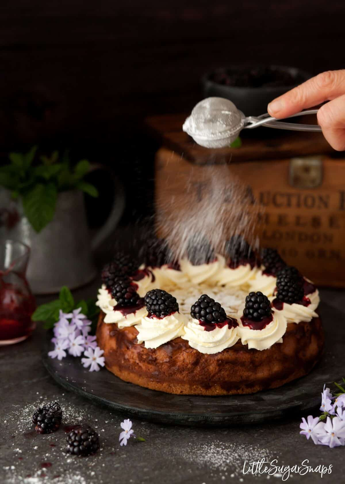 Dusting a baked blackberry cheesecake with icing sugar