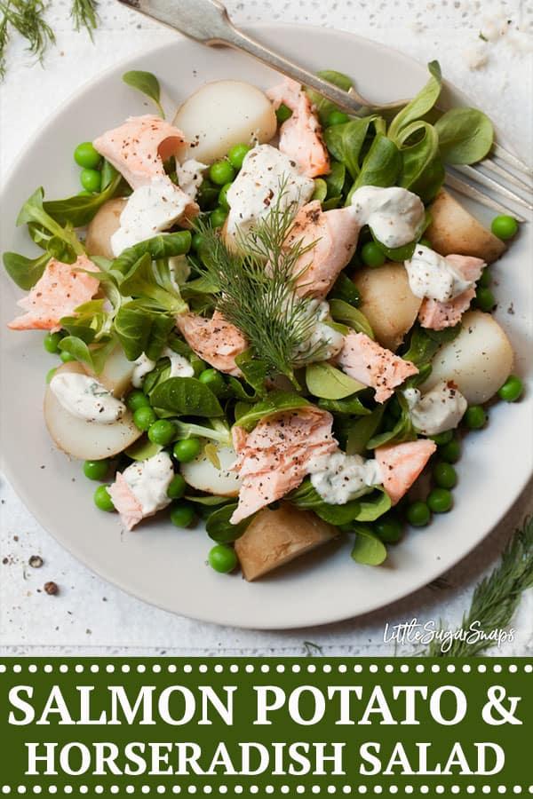 salmon potato horseradish salad #salmonpotatosalad #salmohorseradishsalad #horseradishrecipe #salmonandhorseradish #horseradishsalad