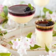 Lemon Posset recipe with Blackberry Compote in individual glasses