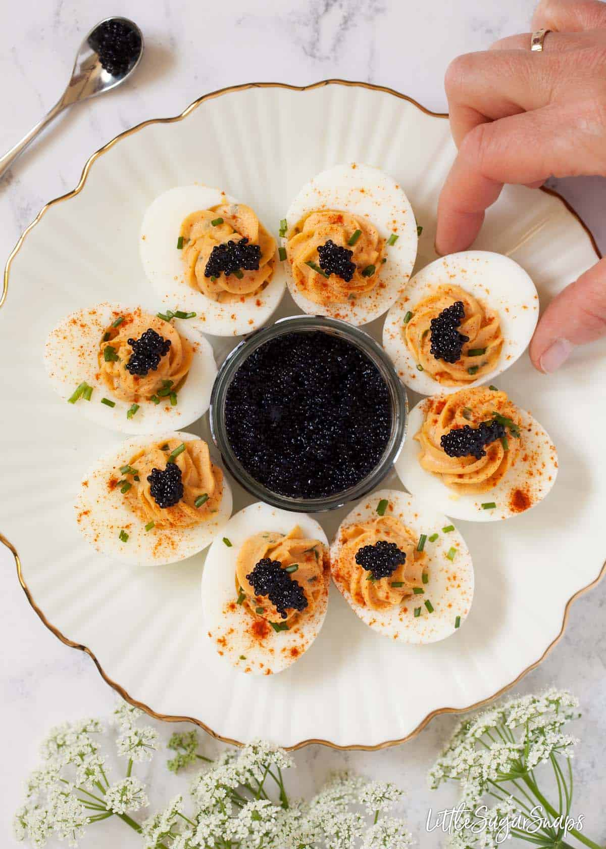 Devilled eggs with caviar on a gold rimmed white plate. A person is taking one of the eggs from the plate and there is a pot of caviar in the middle of the plate