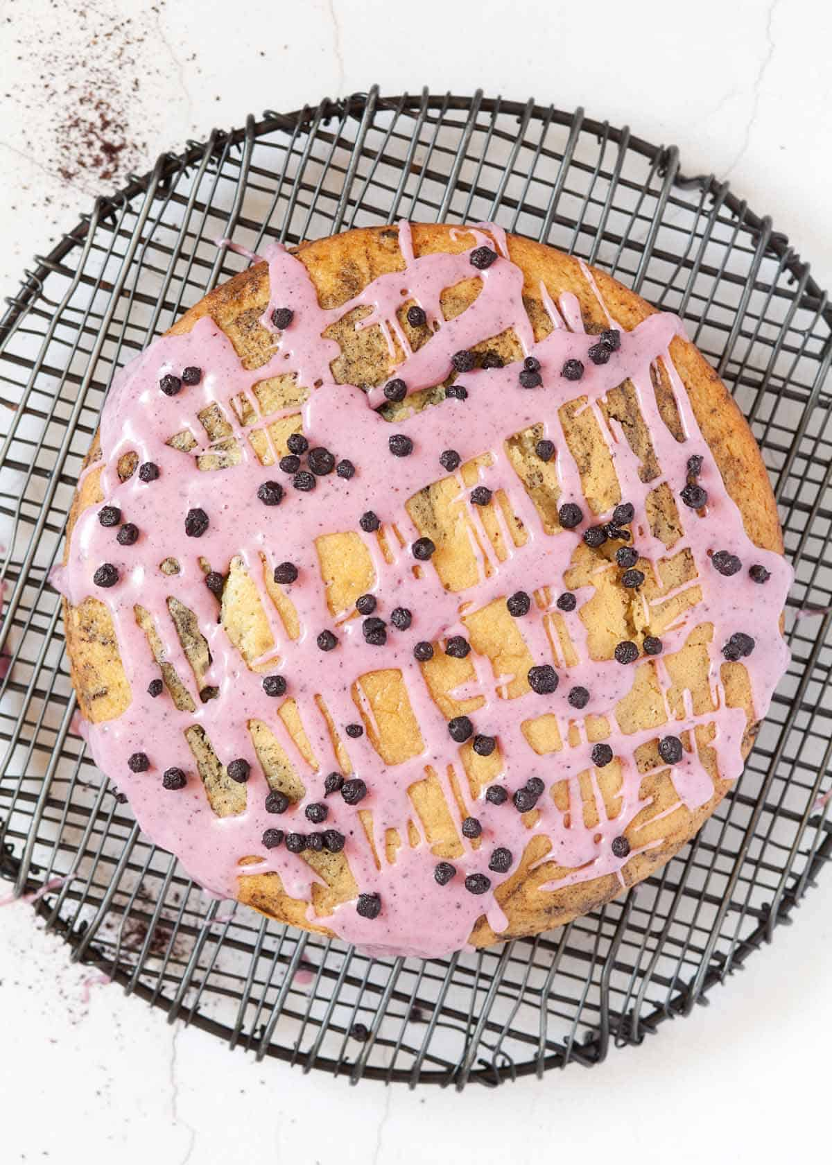 Vegan blueberry cake topped with bilberry icing with blueberries on top
