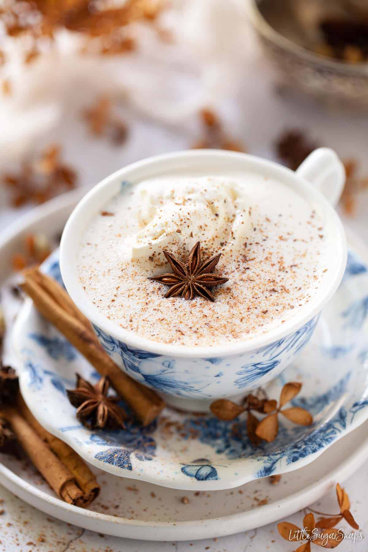 A cup of frothy spiced hot chocolate with cream, ground spices and star anise garnish
