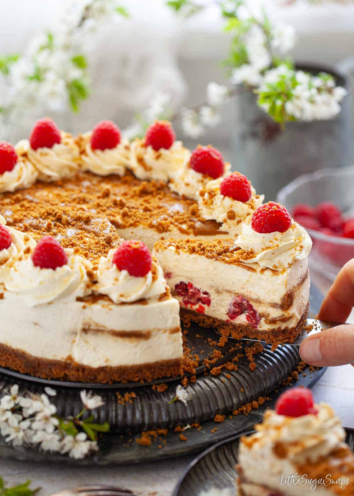 Person serving a slice of biscoff cheesecake with rasberries