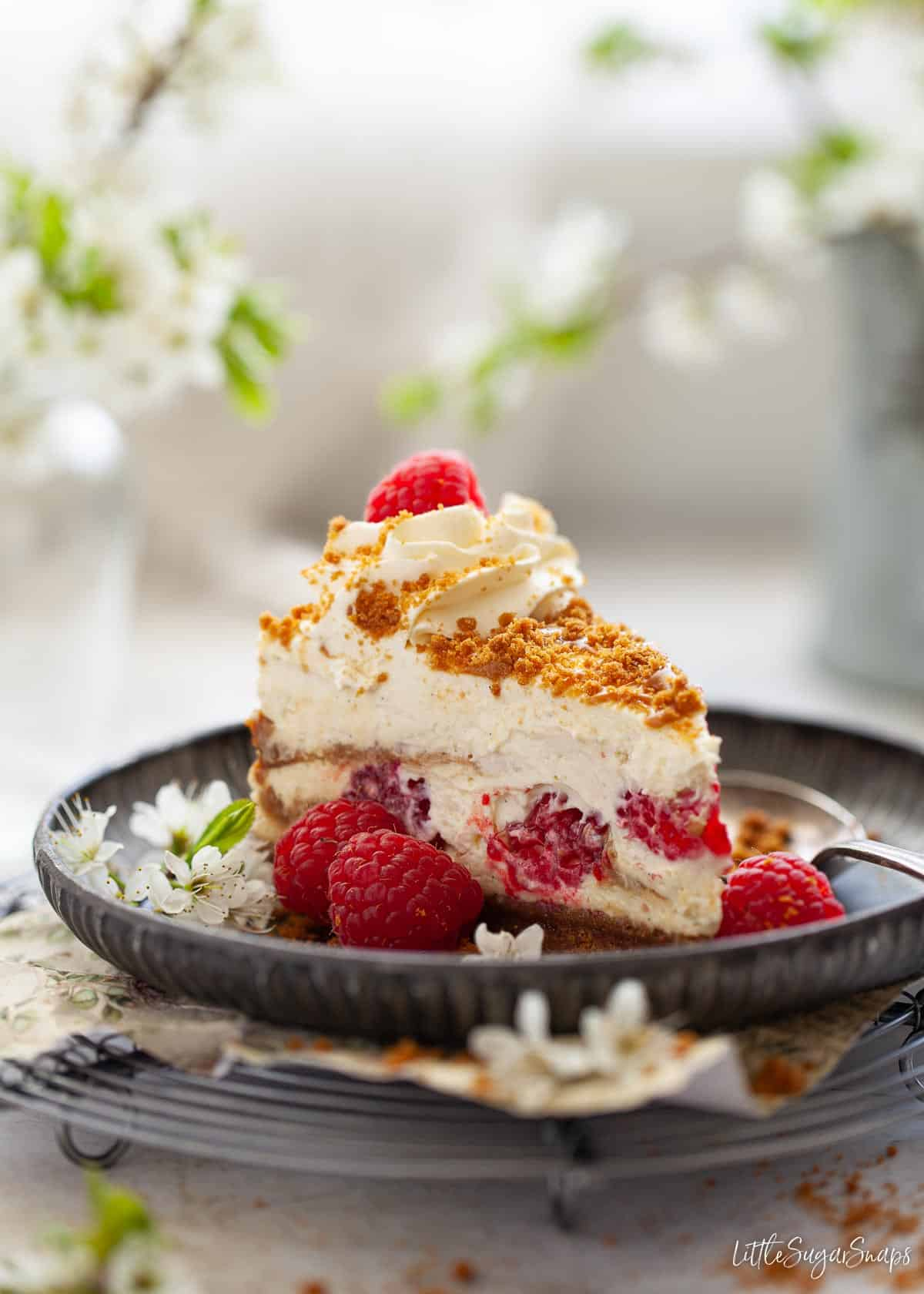 A slice of raspberry and biscoff cheesecake and a plate