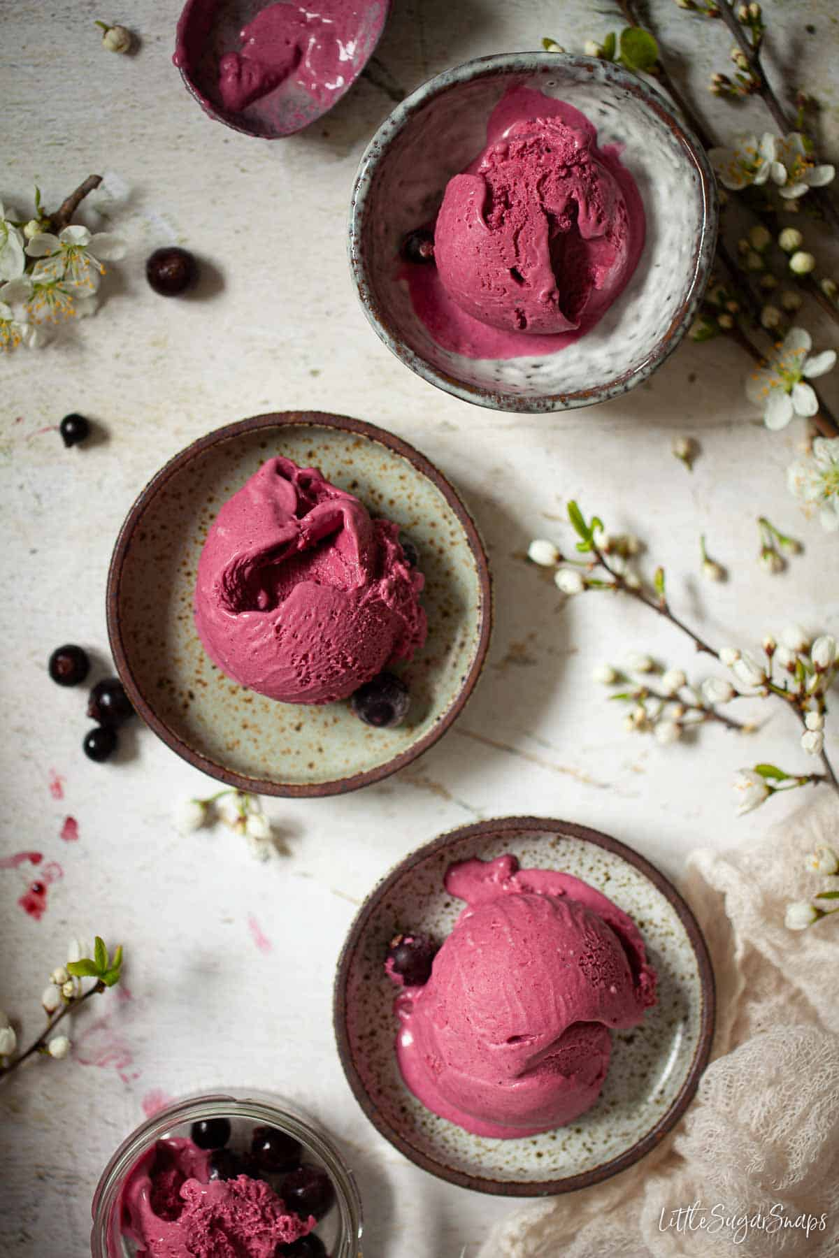 Single scoop servings of blackcurrant ice cream on a mixture of plates and bowls