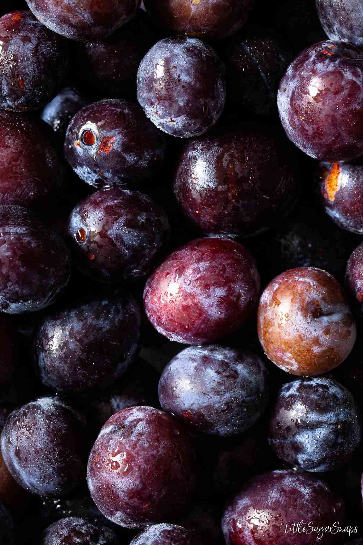 Close up of fresh damson plums