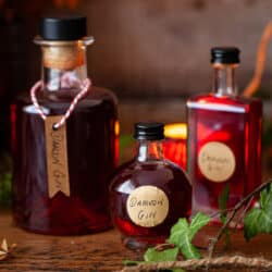 Bottles of various sizes filled with damson gin liqueur with labels attached for gifting.